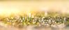 Sonnenblüte (DaOpfer) Tags: blumen blumenundpflanzen blümchen bokeh botany closeup fragility frühling geroldsee gras k1 krokus licht light macro makro nature pentax sonnenaufgang beauty blossom crocus daytime detail flower focus gapaland grass heimatblendede meandmypentax natural outdoor outdoors outside plant purple soft spring springtime two view wildflower