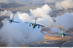 Mirage 2000, A-1M e F-5EM (Força Aérea Brasileira - Página Oficial) Tags: a1m aeronave brazilianairforce embraera1amx f5emtigerii fab forcaaereabrasileira fotojohnsonbarros northropf5emtigerii turbofanrollsroycespey807 turbojatogeneralelectricj85 turbojetgeneralelectricj85 131105joh1052cjohnsonbarros natal rn brazil bra aircraft airplnae jet jato sky céu ground cloud nuvem tree três clouds flickr dassault embraer mirage 2000