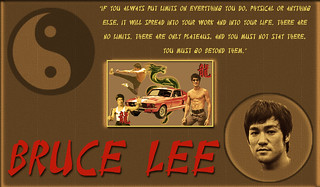Bruce Lee tribute-1