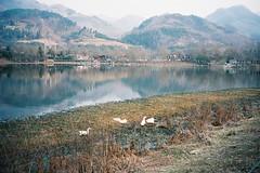 Houliu town,Shiquan,Shaaxi,China (Leung梁) Tags: film filmphotography photo photography color china