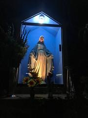 Holy Mary, Mother of God! (Roblawol) Tags: blue candles catholic catholicchurch church elagustino evening flowers icon latinamerica light lima mary night peru religion religious southamerica statue virginmary
