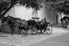 Break (desmokurt1) Tags: lissabon lisbon lagos faro portugal algarve sw bw color kurtessler atlantik tejo vascodegamma downtown village water sintra pferd