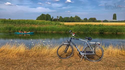 Hot and dry Summer, Odijk, Netherlands - 2688