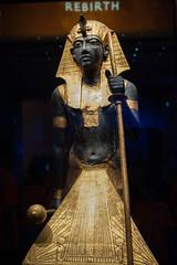 Tutankhamun Exhibit at the California Science Center. (LisaDiazPhotos) Tags: tutankhamun exhibit california science center losangeles king tut lisadiazphotos speak name dead you make them live again