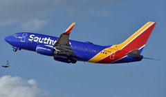 Southwest Airlines Boeing 737-7H4(WL) (zfwaviation) Tags: kdal dal dallas love field airport spotting southwest swa wn texas aviation airplane plane aircraft airline hdq headquarters deck n478wn b737 737700 737