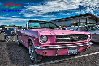 Pink Mustang - Explored