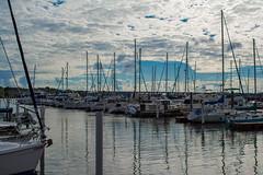 New Bern Marina (Shawn Blanchard) Tags: new bern nc north carolina boat sky clouds blue white water marina coast sail