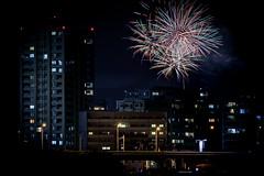 ふしの夏祭り花火大会2018 #3ーSummer Festival fireworks of Fusino2018 #3 (kurumaebi) Tags: yamaguchi 山口市 ogoori 小郡 nikon d750 landscape fireworks 花火 night 夜