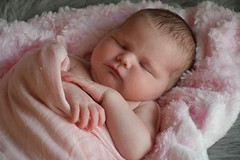 2018-08-06_06-28-55 (tiffanycsteinke) Tags: sophie newborn newbornphotography infant babygirl baby