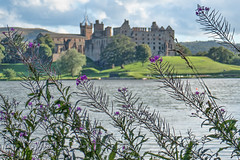 2018-08-08 (Day 220) Linlithgow Cliche