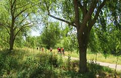 Las bicicletas son para el verano (kirru11) Tags: viaverde árboles campo hierba camino bicicletas personas cielo quel larioja españa kirru11 anaechebarria canonpowershot