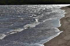 Walk on the beach (thomasgorman1) Tags: tide water coast beach nikon seascape island hawaii sand molokai glimmer shining shimmer reflection sunlight nature