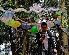 Under the shade of umbrellas (A. Yousuf Kurniawan) Tags: park umbrella people walking decisivemoment colourstreetphotography streetphotography colourful tree banjarbaru borneo kalimantan
