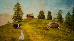 Pastoral (Alan McRae) Tags: textured photoshop nature surreal littlegirl pig humor mite field pasture