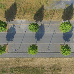 Straße mit Baum thumbnail