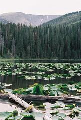 Surprise Lake, Colorado (qbose8) Tags: olympus om2n colorado lake mountains