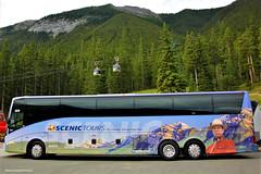Scenic Tours Bus at the Sulphur Mountain Gondola, Banff National Park, Alberta, Canada (Black Diamond Images) Tags: sulphurmountain mountsulphur bowvalleyviews bowvalley bowriver banff banffnationalpark alberta canada scenictours scenic 2012 banffgondola goldola banfflookout sulphurmountainlookout sulphurmountaincosmicraystation scenictoursbus bus travelalberta albertatravel albertaholiday holidayalberta