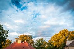Dynamic sky.jpg (MichalKondrat) Tags: 2018 szczecin dachy zachodniopomorskie niebo pogoda miasto chmury lato drzewa hdr polska pogodno wieczór sierpień sigma1020mm zieleń przyroda niedziela nikond300s
