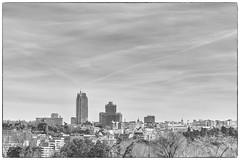 Madrid skyline (ninestad) Tags: