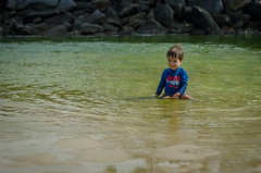 Diego (mcvmjr1971) Tags: trilhandocomdidi 2018 50mmf18d d7000 itaipu praiadeitaipu beach bolinha bordercollie brincando cachorras cachorro correndo dog lagoa mmoraes nikon niterói