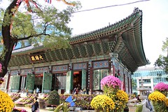 Temple in the Flower Festival (Jane Inman Stormer) Tags: temple buddhist flowers architecture seoul southkorea mums yellow pink flower festival religion