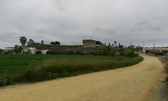 TEJADA LA NUEVA Y FUENTE DEL FRAILE (ESCACENA DEL CAMPO) (DAGM4) Tags: tejadalanuevayfuentedelfraile tejadalanueva provinciadehuelva andalucía españa europa espagne europe espanha espagna espana espanya espainia spain spanien 2018 ruinasromanas ruinas ruins romanruins escacenadelcampo