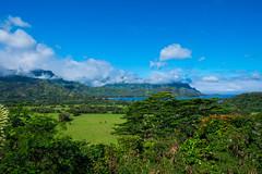 DSCF4197 (firebellys) Tags: kauai