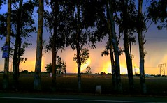Rising Storm (camaee29) Tags: beautiful blue clouds field forest grass green nature road storm summer trees light sun sunset travel tree punjabi india awesome patiala cloud outdoor architecture skyline countryside village highway