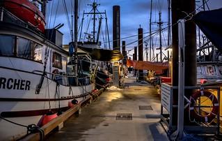 On the docks -  Fisherman's Wharf