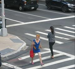 New York Style - The Mice Dress (Pushapoze (NMP)) Tags: newyorkcity onthestreet dogs sidewalk flowers bouquet