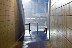 Downpour, July 25, 2018 2 (meg21210) Tags: orioles camdenyards baltimore maryland downpour rain storm ballpark ballgame cancelledgame field sport baseball