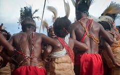 DSC_0108 (yakovina) Tags: silverseaexpeditions indonesia papua new guinea island tambrauw