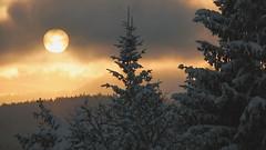 Tehdy zapadalo slunce nad Modravou ... (toulavej54) Tags: šumava zima hory sníh slunce stromy západ