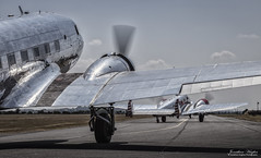 Classics headed out (Nimbus20) Tags: dougla beech aircraft propliner airliner old classic silver shiny duxfod legends