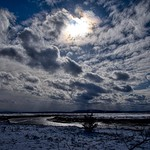 Cold March Marsh thumbnail