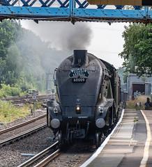 60009 Winchfield 26 July 2018 (3) (BaggieWeave) Tags: hampshire winchfield lswr southwestmainline southwestern a4 pacific 462 60009 unionofsouthafrica steamengine steamlocomotive steam steamtrain dorsetcoastexpress