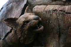 Tree of Life detail (Rick & Bart) Tags: waltdisneyworldresort animalkingdom disney orlando florida rickvink rickbart canon eos70d disneyworld treeoflife