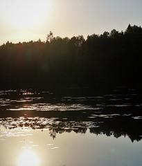 6Q3A6650 (www.ilkkajukarainen.fi) Tags: soukka espoo visit happy life travel traveling suomi finland finlande summer kesä 2018 lampi water vesi waterlilies sun set auringon lasku eu eropa scandinavia