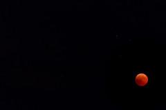 Lunar eclipse from Croatia (josip_petrlic) Tags: lunar eclipse bloody moon croatia night sky canon eos