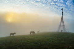 Ni un alma en el paraíso (Jabi Artaraz) Tags: santanatxu gorbea gurutzea cruz montaña mendia amanecer niebla bruma horse nature sunset sunrise calma paz soledad paraíso