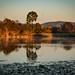 Norfolk Lake