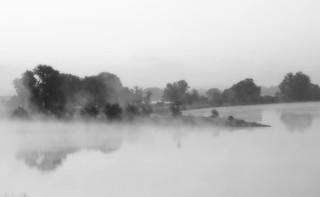 Frühnebel an der Elbe Morning Fog at the river Elbe