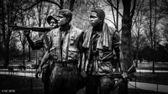 Vietnam Veterans Memorial, Washington, D.C. (georgechamoun1984) Tags: washingtondc usa america unitedstates districtofcolumbia dc washington nationalmall thethreesoldiers thethreeservicemen frederickhart bronze statue vietnamveteransmemorial memorial vietnam