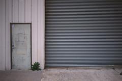 Santa Clara (bior) Tags: santaclara street canoneos3 ektachrome kodakektachrome64 slidefilm expiredfilm 35mmfilm ef40mmf28stm industrial warehouse empty