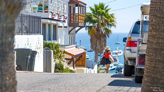 To the beach (yarnim) Tags: landscape people person beach ocean pacific catalinaislands california woman a7m3 ilcea7m3 a7iii 55mm carlzeiss palmtree frame composition