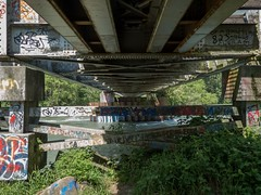 P1090509 (Copy) (pandjt) Tags: bc britishcolumbia travelogue chilliwack chilliwackbc greatblueheronnaturereserve heronreserve chilliwackriver chilliwackriverrailwaybridge vedderriver vedderriverrailwaybridge bchydrorailwaybridge southernrailbridge steeltrussbridge steeltrussrailwaybridge railwaybridge