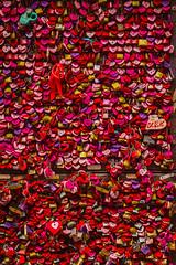 IMG_1376 (Siomara Marquetti) Tags: italy italia rome roma pisa montecarlo tuscany florence florencia verona san gimignano venice venezia romance love lovers romeo juliet juliette giulietta giudecca burano island water mediterranean europe travel solo traveler traveller canon t2i dslr lightroom italian color colorful cat cats gondola gondolas gondolier history ancient colosseum david vatican city vaticani citta marco piazza saint marks square statue statues