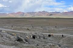 Landscape around Lake Namtso, Tibet (Prof. Mortel) Tags: tibet lake namtso