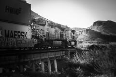 DPU's (Douglas H Wood) Tags: kingmancanyon arizona seligmansub bnsf blackwhite westbound locomotive landscape train