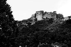 Le château fort de Mâlain - The fort of Mâlain (g.thevenot) Tags: architecture chateau fort malain bourgogne burgundy 2018 sony rx100 noirblanc blackwhite monochrome arbres trees forêt castle medieval